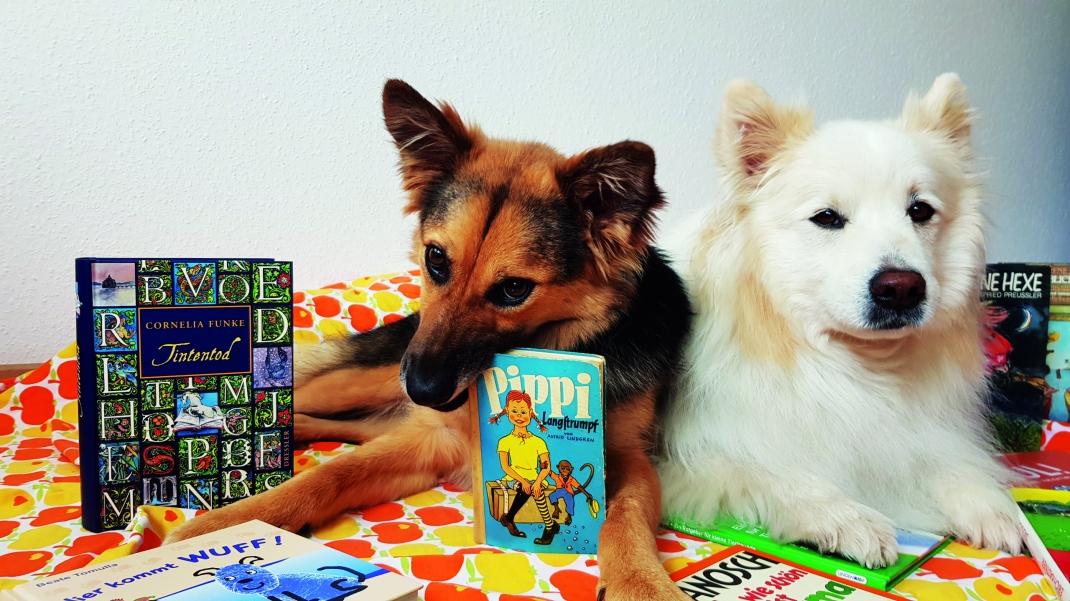 Lesen mit Hund_Foto von Flyer
